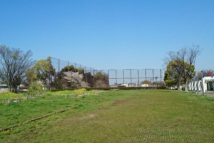 清水ケ丘公園